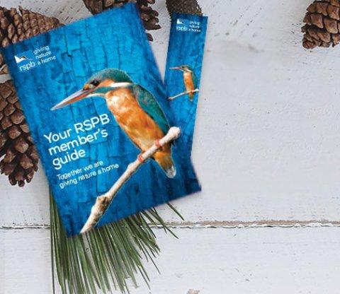 Membership guide depicting a kingfisher